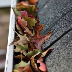 Clogged gutters filled with fall leaves  in Buhl