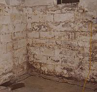 Peeling, Chipping, Basement Wall Coatings in Rathdrum
